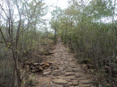Caminho Arunachala